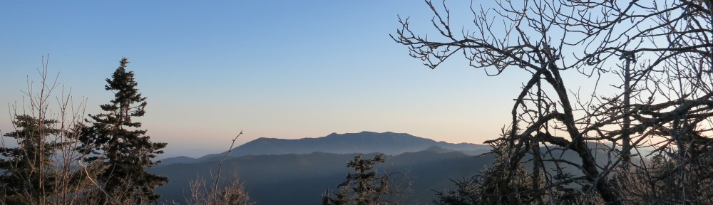 View near Clingman's Dome